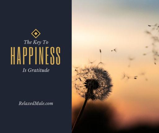 Build an attitude of gratitude
